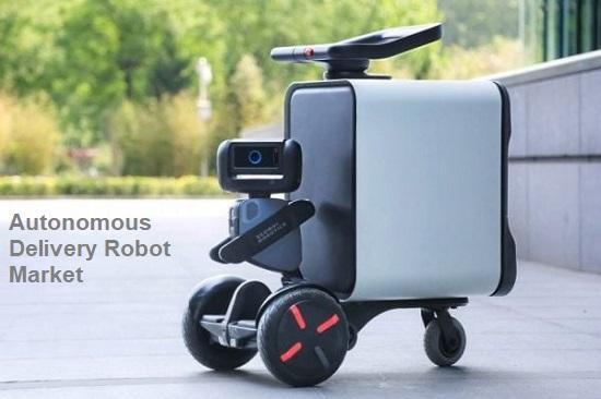 Autonomous Delivery Robot Market Top Key Players - Marble Robot