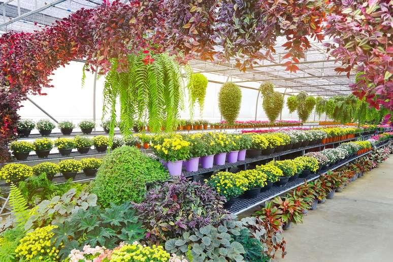 Garden Products Retailing