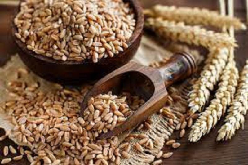 Asia-Pacific Wheat Protein Market