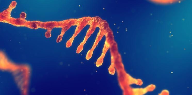 Global RNA Therapeutics Market