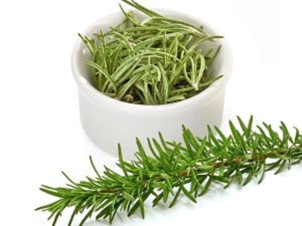 Rosemary Extracts Market