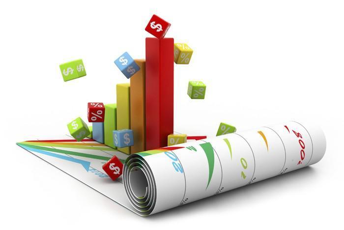 Credit risk management software