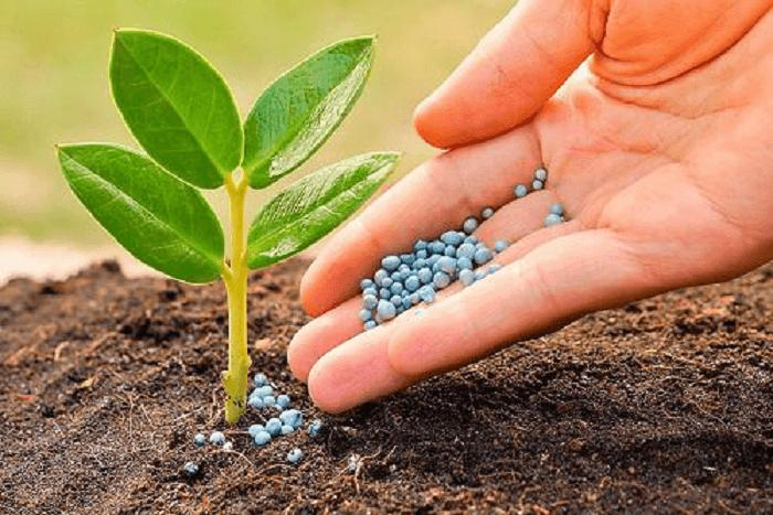 Specialty Fertilizers Market