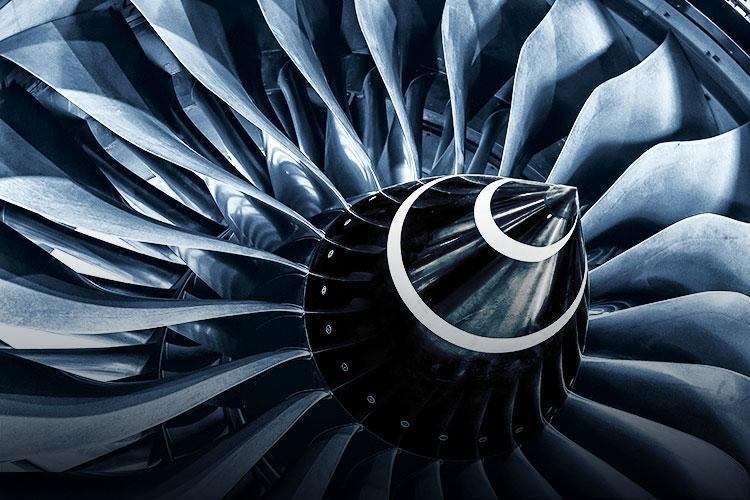 Aeroengine Fan Blades