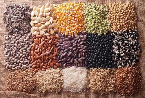 Organic seed market is expected to register a CAGR of 12.7%, over