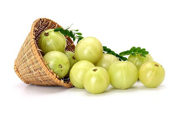 Amla Extract Market: Growing Demand for Antioxidant-Rich
