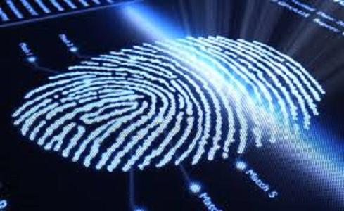 Automated Fingerprint Identification Systems