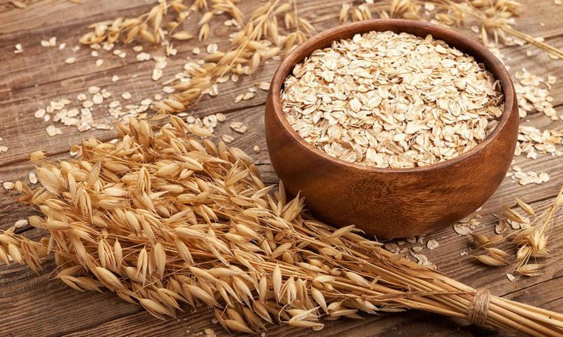 North America Oat Proteins Market