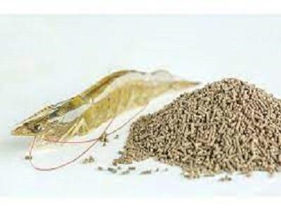 Global Shrimp Feed Market Research Report