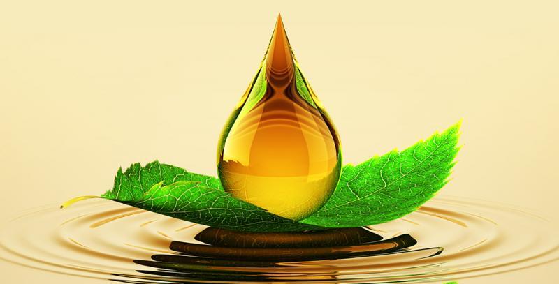 Bio-Lubricants Market Trends, Demand, Industry Report,