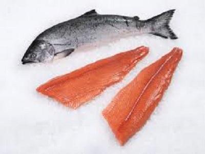 Global Salmon Market Report