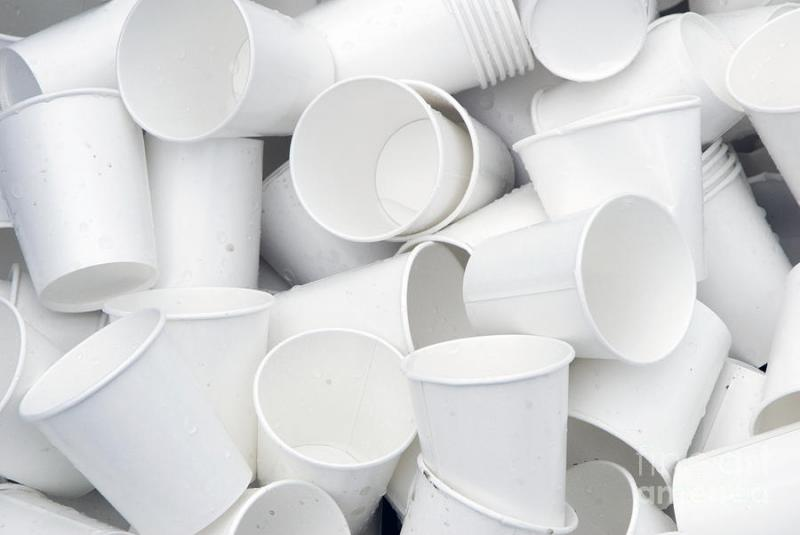 Paper Cups Market Size, Share, Analysis and Forecast 2021-2026