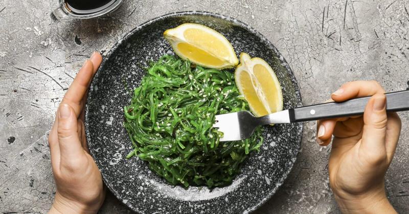Seaweed Market Report 2021-2026
