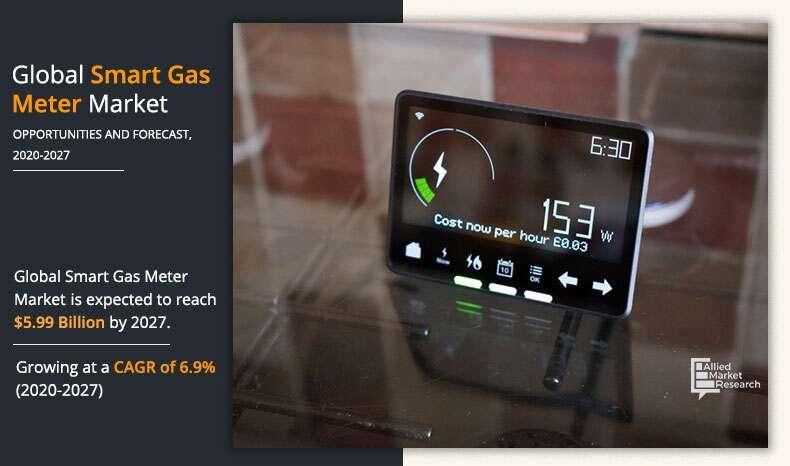 Smart Gas Meter Industry