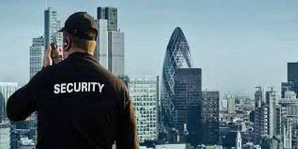 Manned Security Service