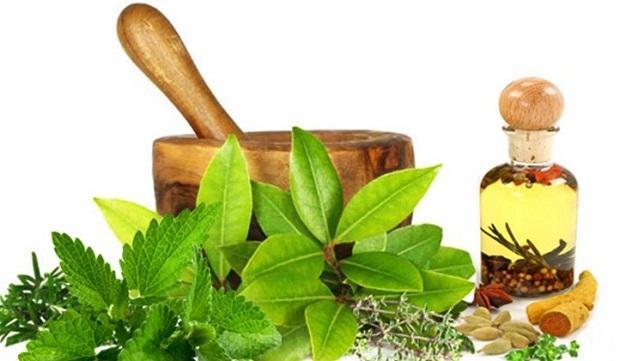 Global Herbs Market, Global Herbs Industry, Covid-19 Impact