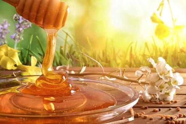 Organic Honey Market