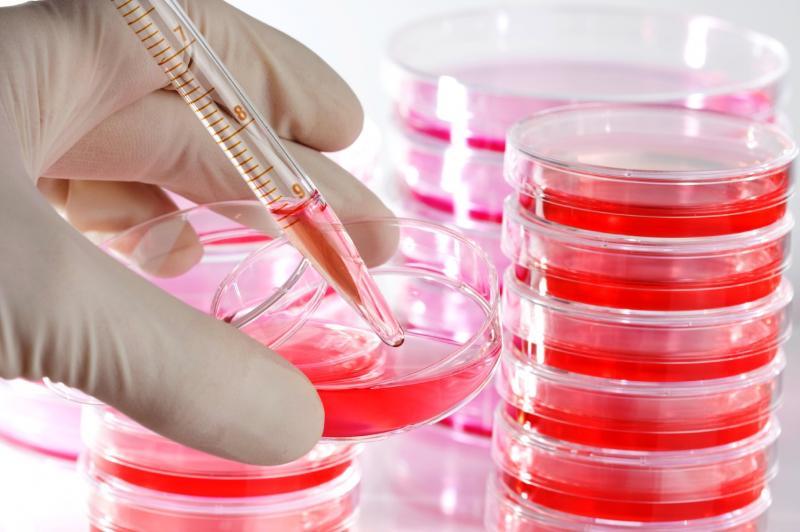 Cell Tissue Culture Supplies Market