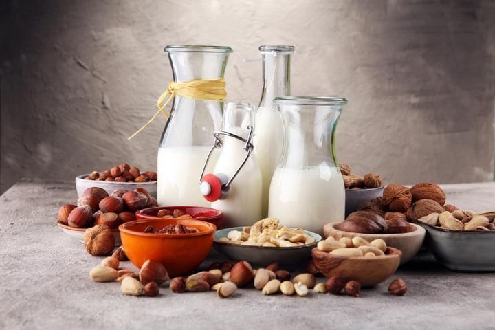 Dairy Alternatives Industry