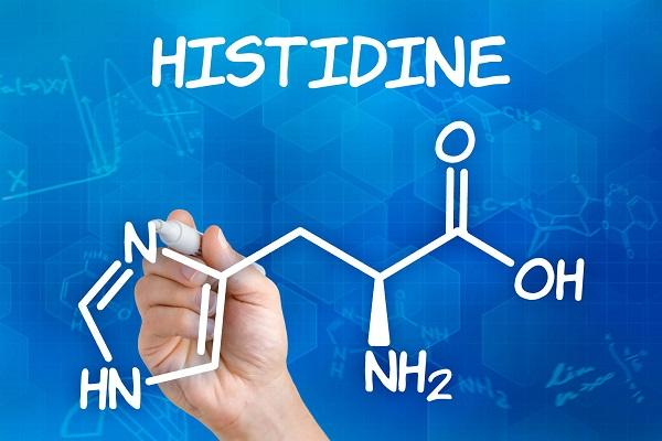 Massive Growth in Histidine Market Set to Witness Huge Growth
