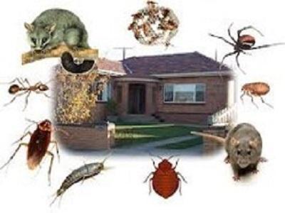 Pest Management Services Market