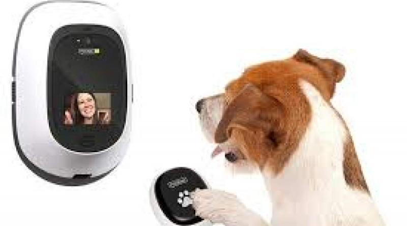 Pet Monitoring Camera Market