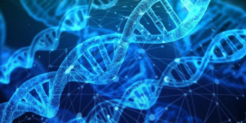Rare Disease Genetic Testing Market to Witness Huge Growth