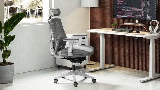 Ergonomic Office Chair Market