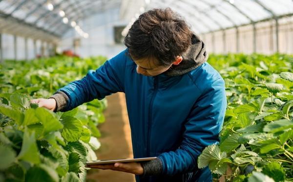 Biological Crop Protection (Bio-Pesticide)