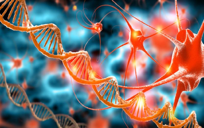 RNA-Targeted Small Molecules Market 2021 – 2028   Key Players: