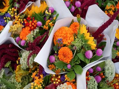 Cut flower segment to dominate the Kenya Floriculture market