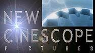 New Cinescope Pictures A Robert Pfitzner Film Thrillseekers The Indosheen