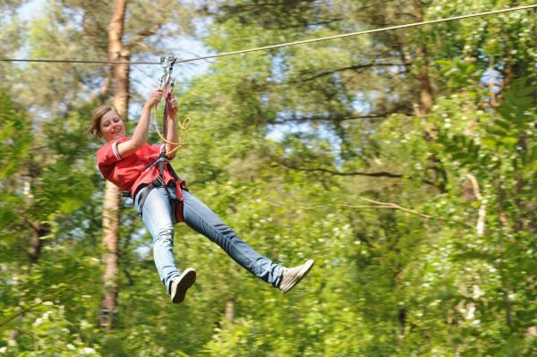 eco-friendly design of Forest adventure parks
