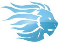 Business Coaching Lion