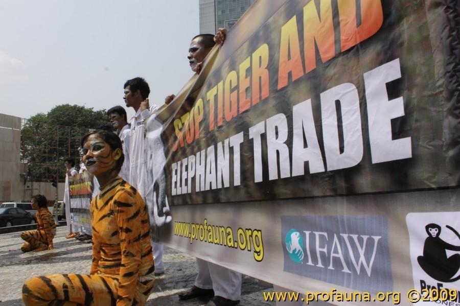 ProFauna staged a unique demonstration urging the government to curb the tiger and elephant trade