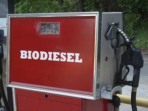 Pluscrates in the bio-diesel business