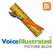 Voice Illustrated Blog
